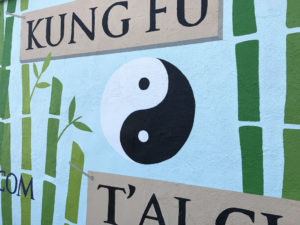 yin yang closeup